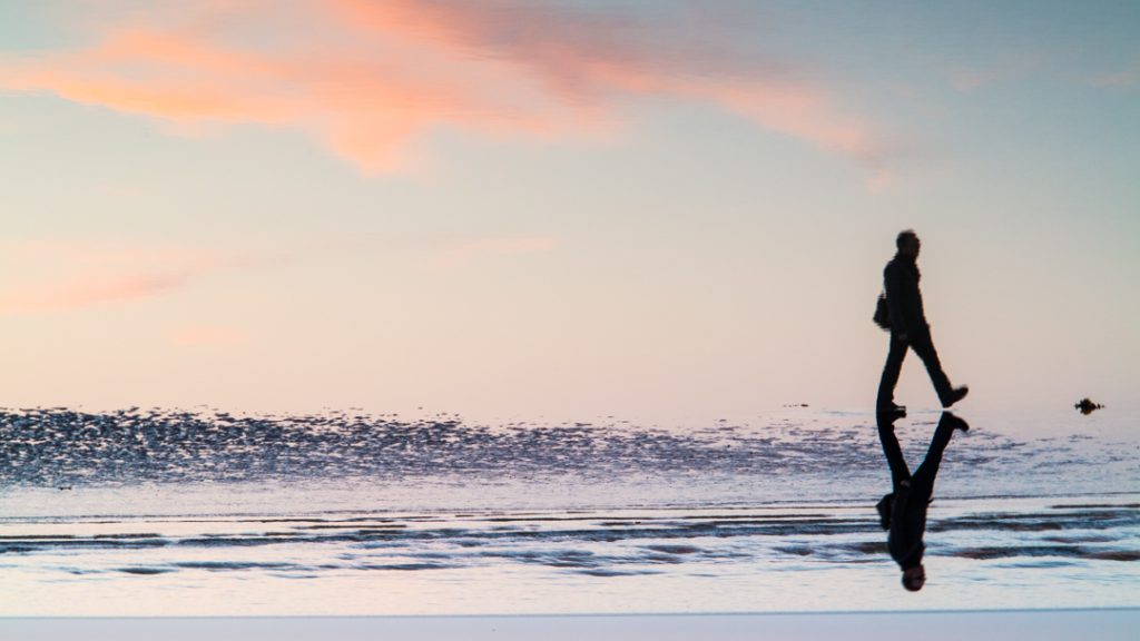 Low Tide Brighton